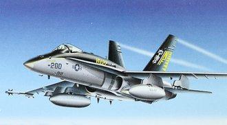 """F-18 Hornet """"US Navy, VFA 27, Capt. K.M. Linn DCAG"""""""