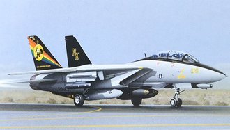 "F-14 Tomcat ""US Navy, Tomcat, VF 31"""
