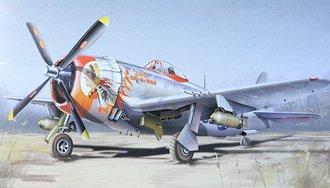 "P-47D Thunderbolt ""USAAF, 509 FS - 405 FG, Europe 1944, WWII"""