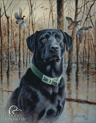 Tin Sign - Ducks Unlimited - Great Retrievers