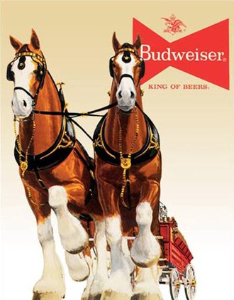 Tin Sign - Budweiser Clydesdale Team