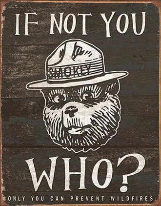 Tin Sign - Smokey Bear - If Not You Who? (Weathered)