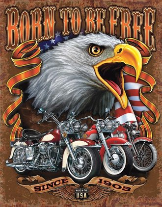 Tin Sign - Born to Be Free - Motorcycles - USA Flag