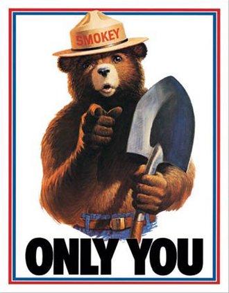 Tin Sign - Smokey Bear - Only You