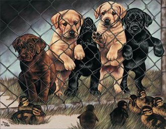 Tin Sign - Graham - Puppy 'Jail Birds'