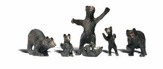 O Black Bears (6)